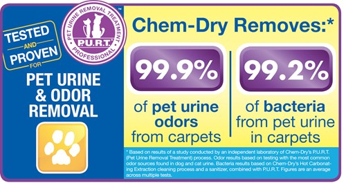 Pet Urine Removal Treatment removes 99.9% of pet urine odors and 99.2% of pet urine bacteria